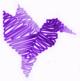 Hummingbird purple