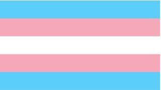 Blue, pink and white transgender palg